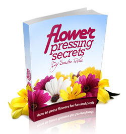 The Flower Pressing Guide