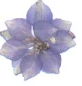 A blue larkspur pressed